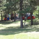 Tent Area under Pines - Rush No More Campground and Cabins Sturgis SD