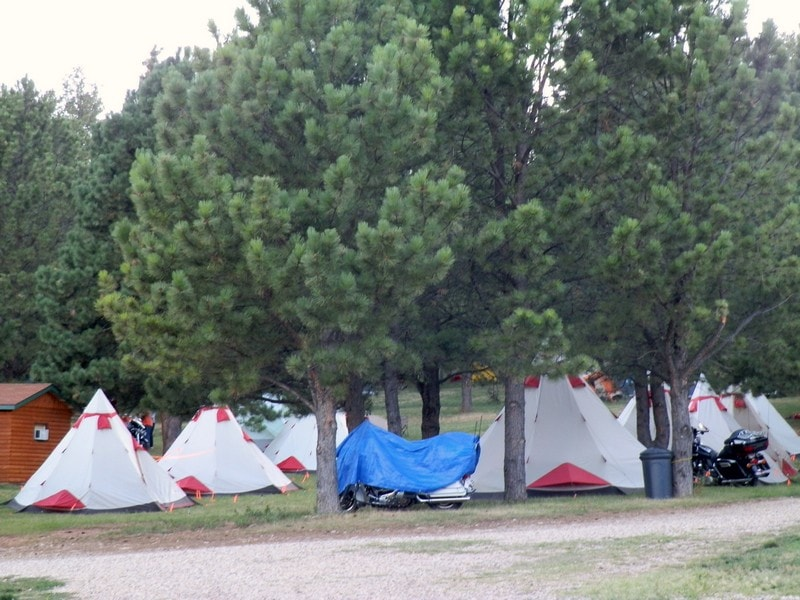 Tents and Tipis - Tent Area under Pines - Rush No More RV Resort and Cabins Sturgis SD